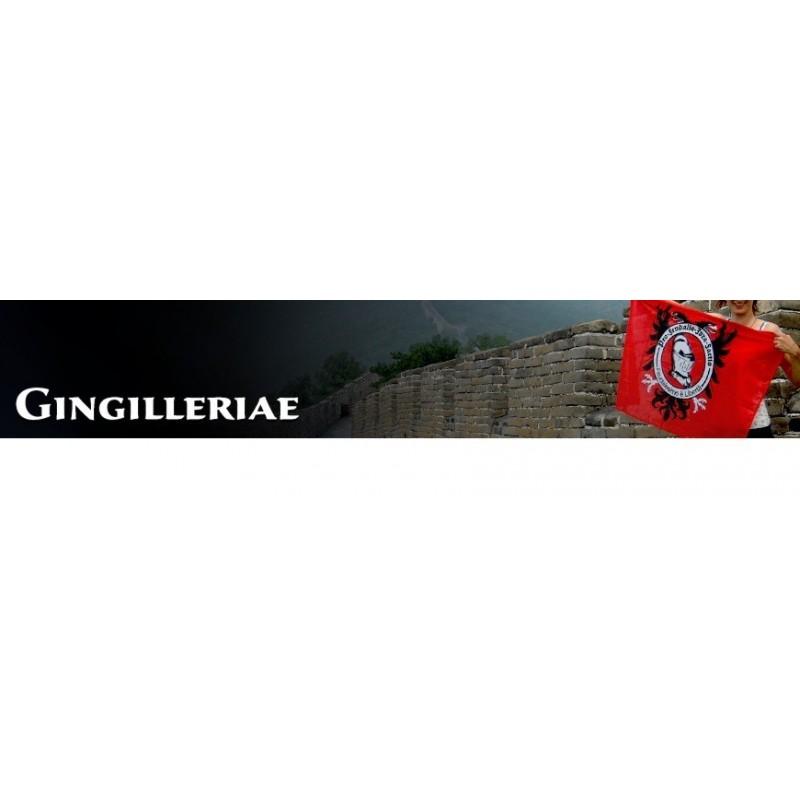 Gingilleriae - Categoria Varie della bottega